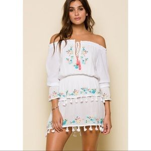 RAGA Ashlyn Embroidered Floral Dress